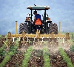 Agricultores argentinos inician huelga por regulaciones