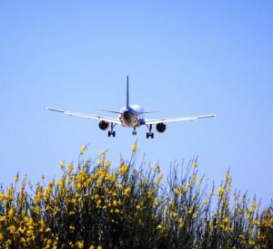Aerolíneas sacan provecho de la baja del petróleo