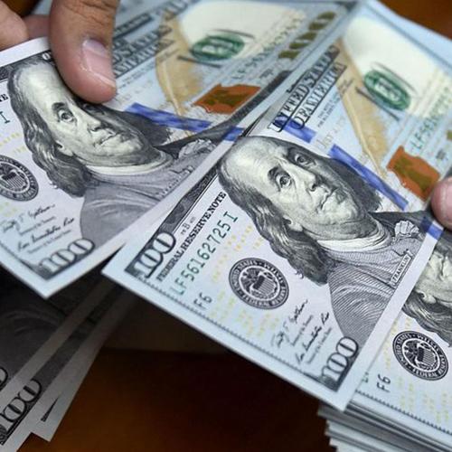 Dicom llega a su subasta 68 con $2,3 millones a BsS 157,12