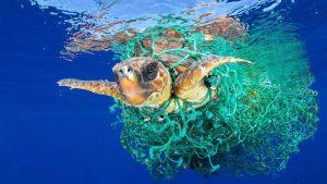 Primer acuerdo para reducir desechos plásticos en el mar fue aprobado por el G20